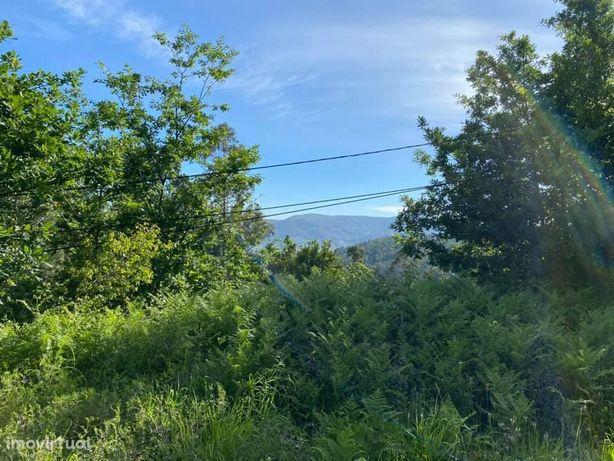Terreno em Santa Maria do Monte - Arouca