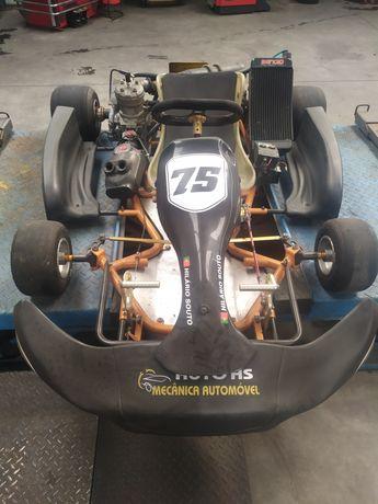 Karting 125cc Profissional