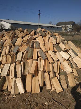 Продам дрова букові