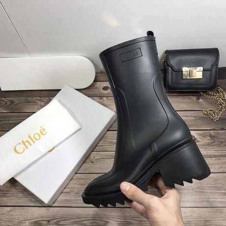 Botins Chloe Novos