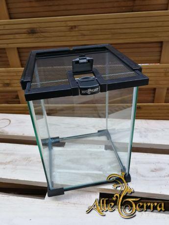 Terrarium szklane 20x20x30 ReptiPlanet