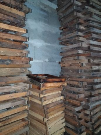 Quadros reversíveis usados - apicultura