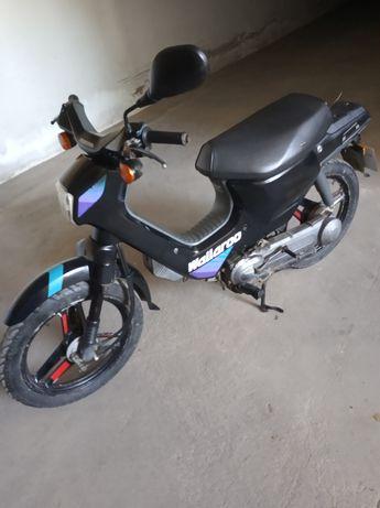 Honda Wallaroo 50
