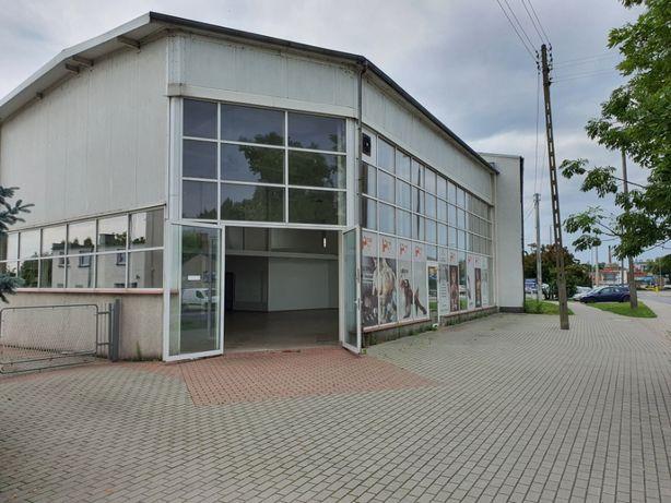 Lokal 250 m/kw , Żnin ul Gnieźnieńska . Siłownia , Fit Jump, Salon itp