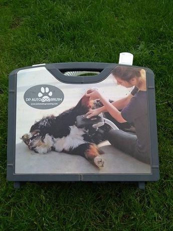 elektryczna szczotka dla psa, pudel, shetle, border