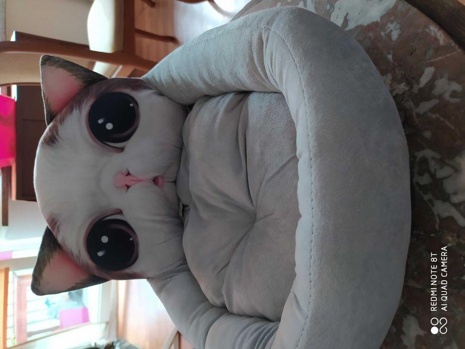 Legowisko dla kota Grodzisk Mazowiecki - image 1