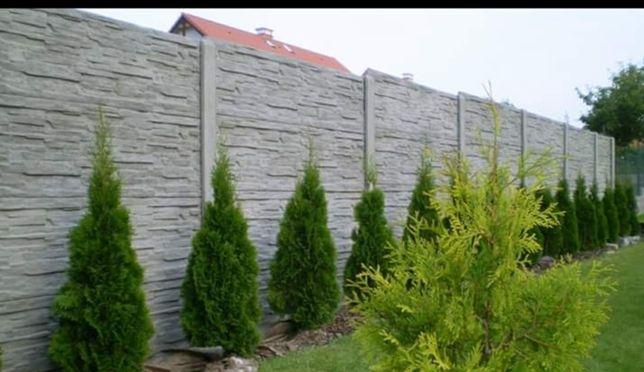 Plot Betonowy Ogrodzenie Betonowe Dużo Wzorów