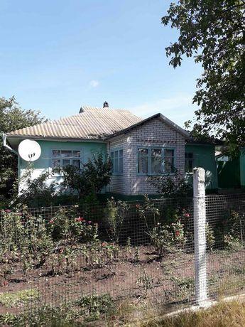 2 дома в экологически чистом живописном месте