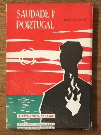 saudade de portugal, joão falcato, colecção educativa