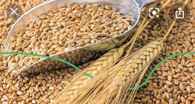 Пшениця,овес,ячмінь,соєвий/соняшниковий шрот,комбікорм гранульований.
