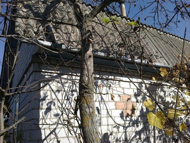 Дача-Дом 2-этаж 6сот.Чернигов(р.Десна оз.Святое,Земснаряд)ЛесоПаркГай
