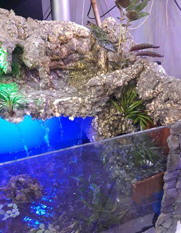 Terrarium Dla Żółwia