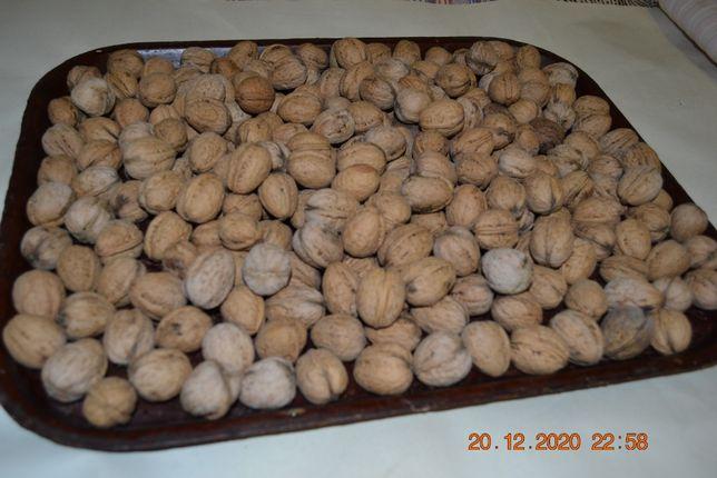 Грецкие орехи урожая 2020 года