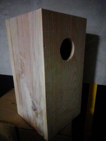 Ninho madeira Papagaio cinzento - Ring Necks