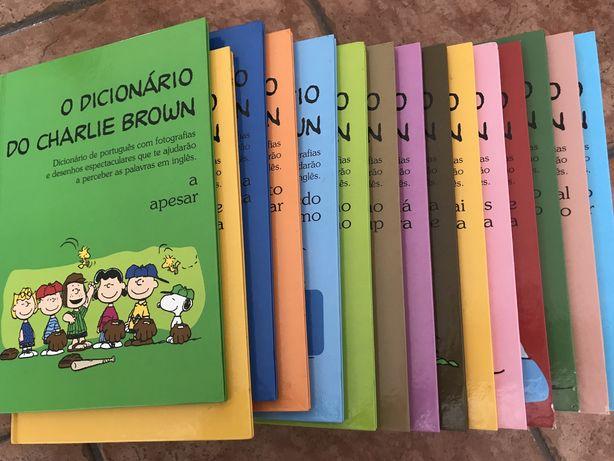 Colecção 16 dicionários Charlie Brown Inglês