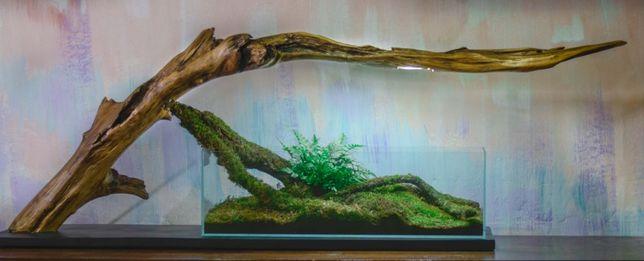 Ексклюзивний акваріумний набір