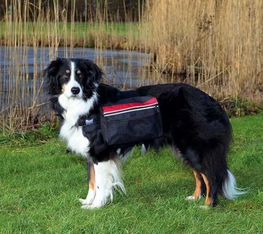 Trixie Plecak trekkingowy dla psa z kieszeniami rozmiar L