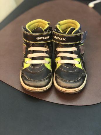 Хайтопы Geox