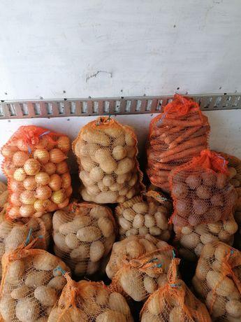 Ziemniaki, cebula, pietruszka, jaja, jabłka. Dostawa pod dom gratis