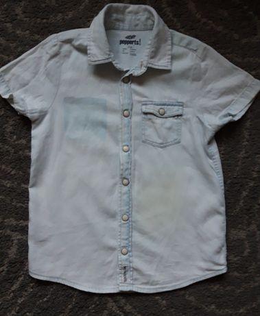 Chłopięca koszula krótki rękaw Pepperts  r. 116