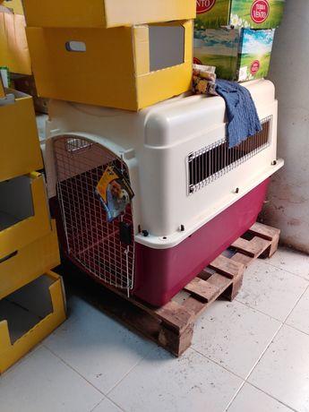 Transportadora para cães grandes.
