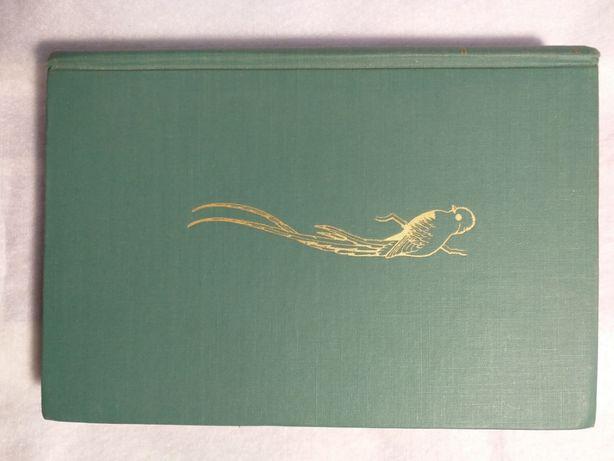 Książka: Ptaki Meksyku