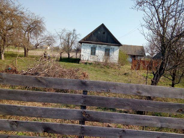 Продам дом в селе Осычки