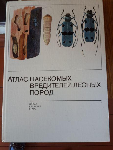 Книга по лесному хозяйству