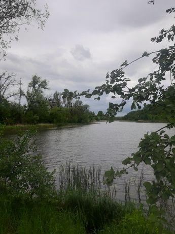 Продам участок 30 соток с коробкой дома, возле озера, село Фастовец
