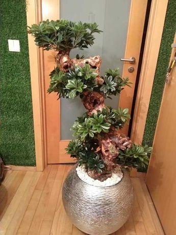 bonsai artificial