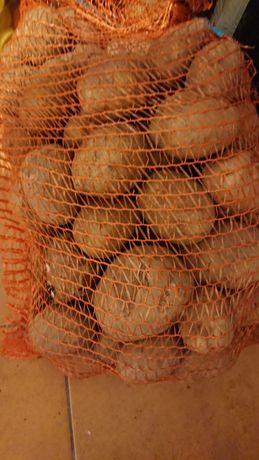 Ziemniaki Vineta  SORTOWANE Cena za tonę -przy zakupie minimum 1 tony