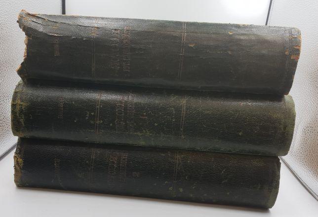 История русской словесности. В 3 томах,1900-1903 гг. Полевой П.Н.