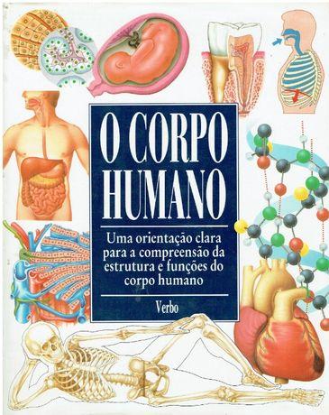 3247 O Corpo Humano / Editorial Verbo