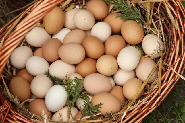 Jajka wiejskie