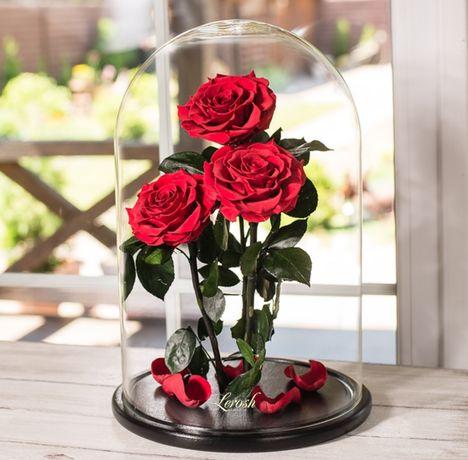 Роза в колбе Стабилизированные цветы