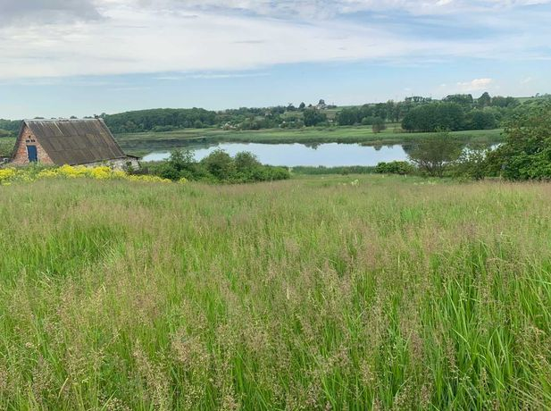 Земельный участок в с. Бортники, Фастовский район, Киевская область