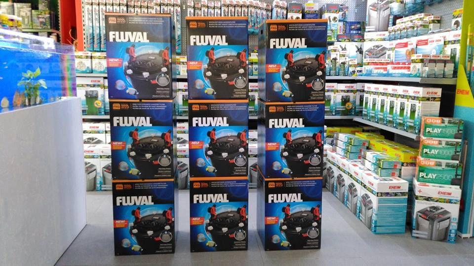 Filtro fluval FX6 novo para aquario