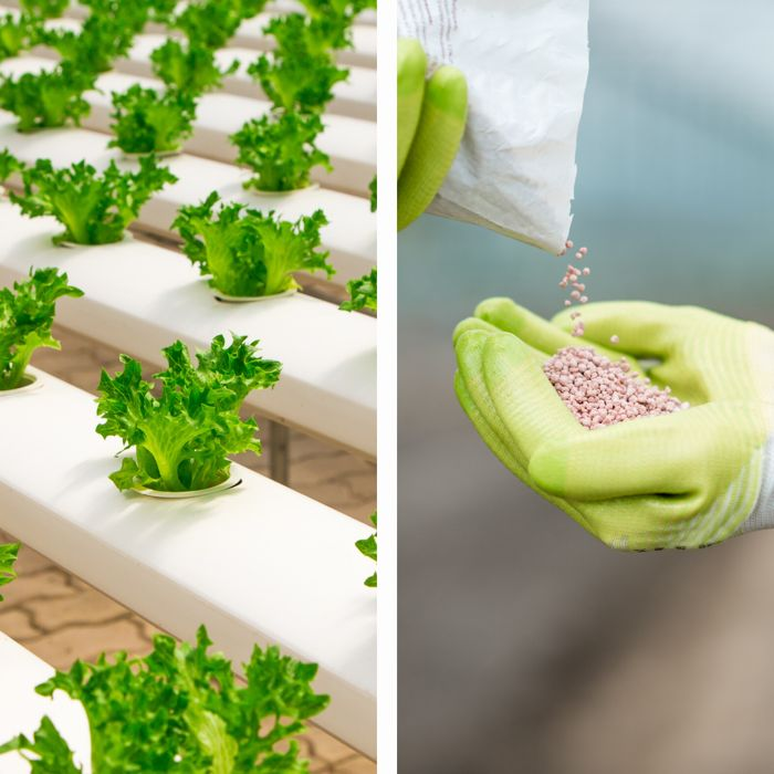 Hidroponia - Nutrientes Folhosas - Loja Oficial Marvila - imagem 1