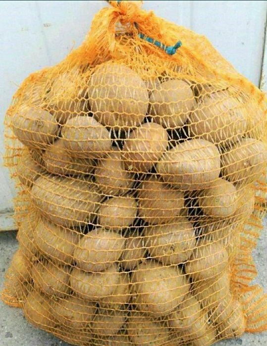 Sprzedam ziemniaki denar Sułoszowa I - image 1