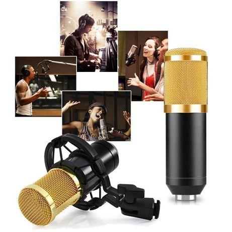 Студийный микрофон Music D.J. M800 U со стойкой и ветрозащитой
