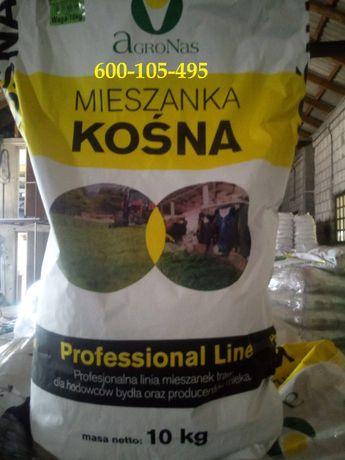 Mieszanka Traw na suche gleby, traw na gleby suche, nasiona traw,