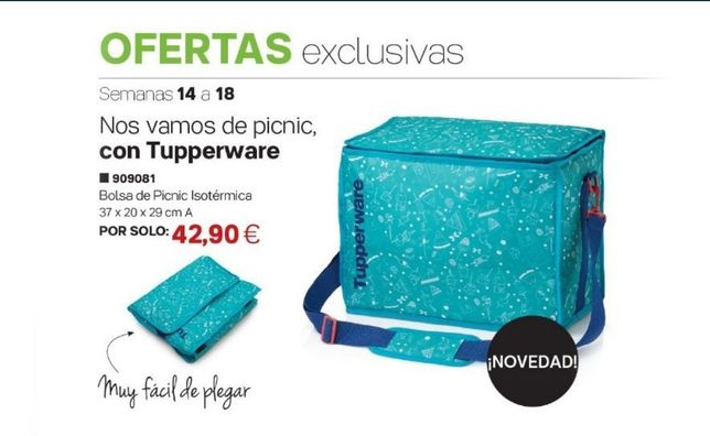 Bolsas / sacos pic nic Tupperware termicos