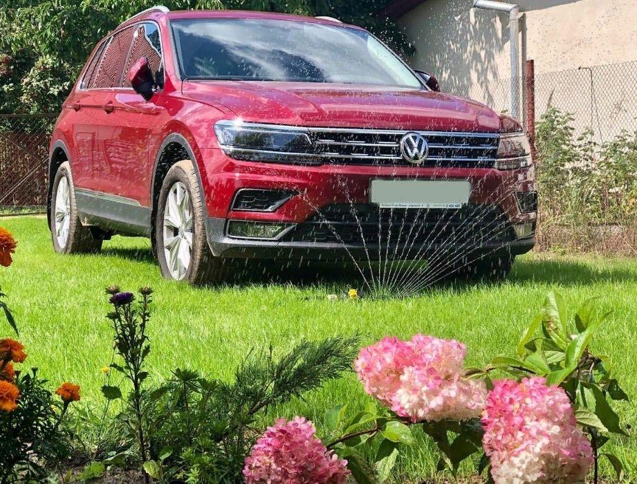 газон для парковки семена газонная трава низкая крепкая под авто