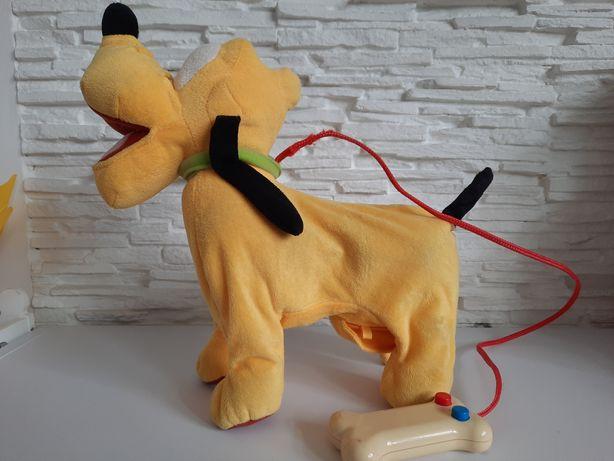 Pies pluto interaktywny