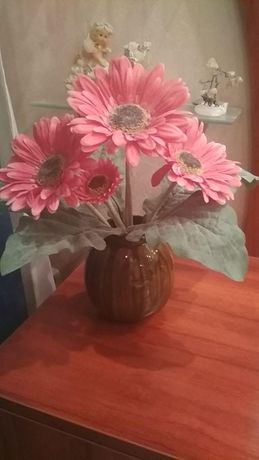 декоративные цветы Герберы
