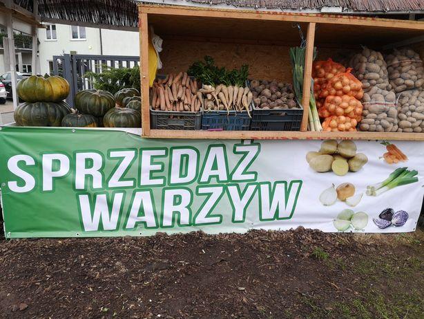 Warzywa, ziemniaki, marchew, cebula, buraki, por, seler.Dowóz gratis