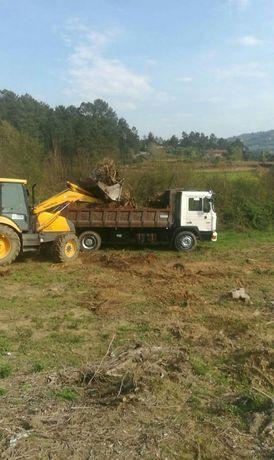 Limpezas florestais