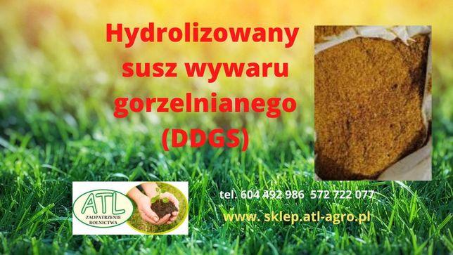 DDGS Kukurydziany (DDGS)