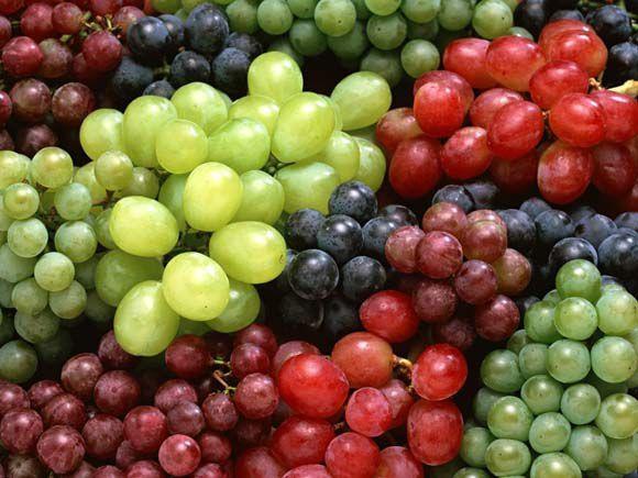 Саженцы винограда более 100 видов разных сортов элитные и др