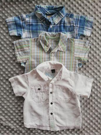 Koszule od 3 do 9 miesięcy